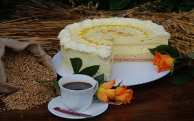 Mango-Joghurt-Torte