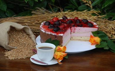 Waldfrucht-Joghurt-Torte